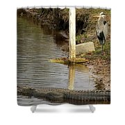 Friendly Hunting Together Shower Curtain