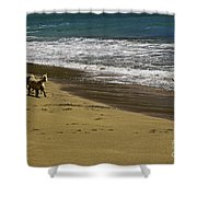 Friends At The Beach Shower Curtain