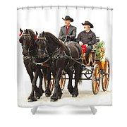 Friesian Carriage Shower Curtain