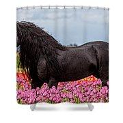 Friesian Fleur Shower Curtain