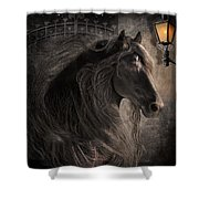 Friesian Glow Shower Curtain