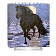 Friesian Horse Blue Moonlight Setting Shower Curtain