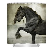 Friesian Surf  Shower Curtain