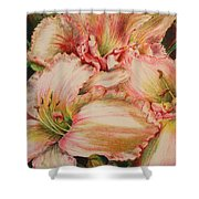 Frilly Pinks Shower Curtain
