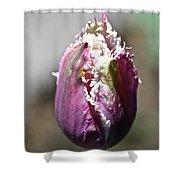 Fringe Blossom Shower Curtain