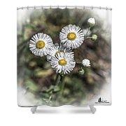 Fringed Daisy Shower Curtain