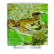 Frog  Abby Aldrich Rockefeller Garden Shower Curtain