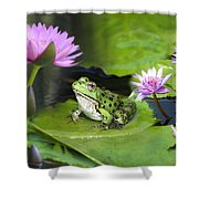 Frog And Water Lilies Shower Curtain