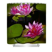 Frog And Water Lily Shower Curtain