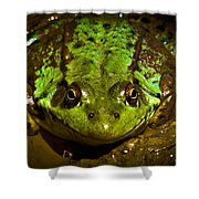 Frog In Mud Shower Curtain