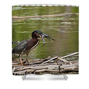 Frog Legs And Green Heron Shower Curtain