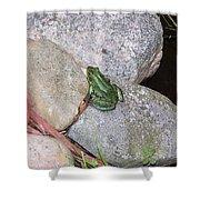 Frog On Rocks Shower Curtain