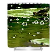 Frog Pond Space Galaxy Shower Curtain