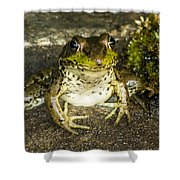 Frog Pose Shower Curtain