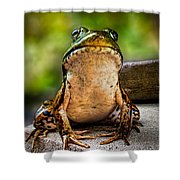 Frog Prince Or So He Thinks Shower Curtain by Bob Orsillo