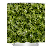 Frog Spawn Shower Curtain