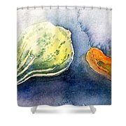 Froggy And Gourds Shower Curtain