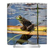 Froggy Reflections Shower Curtain