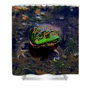 Froggy Smile Shower Curtain