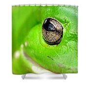 Frog's Eye Shower Curtain by Kaye Menner