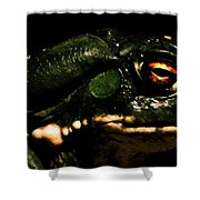 Frog's Eye Of Sauron Shower Curtain