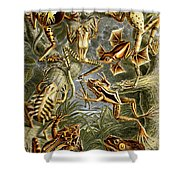 Frogs Frogs And More Frogs Shower Curtain