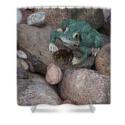 Frogs Imitation And Real  Shower Curtain