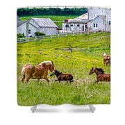 Frolicking Shower Curtain by Guy Whiteley