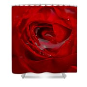 From A Kiss Of Rain Shower Curtain