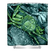 From Another Planet Shower Curtain
