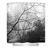 From Hence We Come Shower Curtain