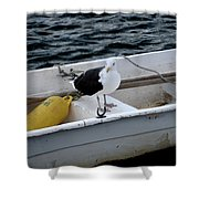 From Rockport Ma A Seagull Chilling Out In A Rowboat Shower Curtain