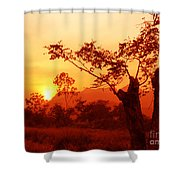 From Thailand With Love 03 Shower Curtain