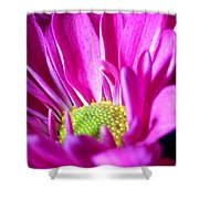 From The Florist Too Shower Curtain
