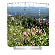 From The Mountain Shower Curtain