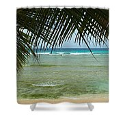 Fronds  Shower Curtain