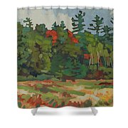 Front Porch View Shower Curtain