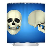 Front View And Side View Of Human Skull Shower Curtain by Stocktrek Images