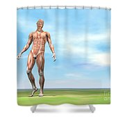 Front View Of Male Musculature Walking Shower Curtain