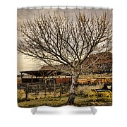Frontier Shower Curtain by Heather Applegate