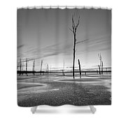 Frost Bite Bw Shower Curtain