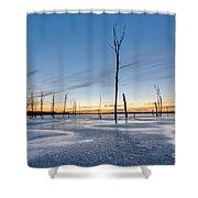 Frost Bite Shower Curtain