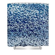 Frost Flakes On Ice - 02 Shower Curtain