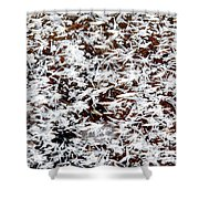 Frost Flakes On Ice - 03 Shower Curtain
