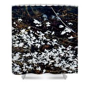 Frost Flakes On Ice - 10 Shower Curtain