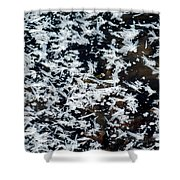 Frost Flakes On Ice - 11 Shower Curtain