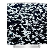Frost Flakes On Ice - 16 Shower Curtain