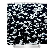 Frost Flakes On Ice - 18 Shower Curtain