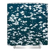 Frost Flakes On Ice - 19 Shower Curtain