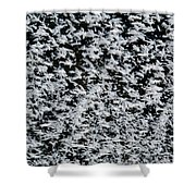 Frost Flakes On Ice - 24 Shower Curtain